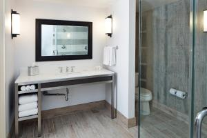 King Suite with Double Shower