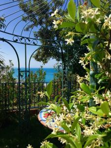 Grand Hotel De Rose, Hotels  Scalea - big - 94