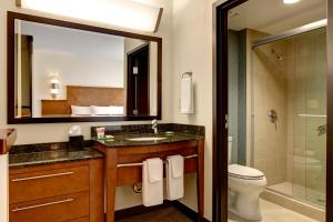 Hyatt Place Chantilly Dulles Airport South, Отели  Шантилли - big - 11