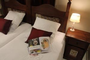 B&B Villa Egmont, Bed & Breakfast  Zottegem - big - 64