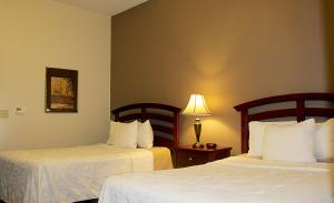 Double Suite with View