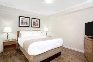 Kitchen Suite, 1 Queen Bed with Sofa Bed - Non Smoking (Pet Friendly)