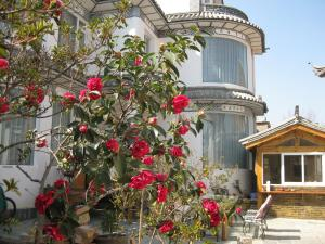 Photo of Dali Old Town Guest House