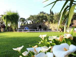 Appartamento Le Rondini, Apartments  Modigliana - big - 4
