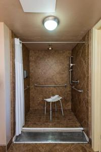 King Room with Roll-in Shower/Disability Access - Ground Floor