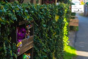 Baan Ha Guest House, Bed and breakfasts  Chiang Mai - big - 19