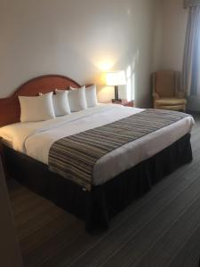 King Guest Room with One King Bed - Disability Access/Non-Smoking