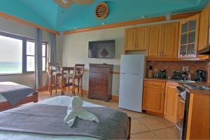Superior Studio Apartment with Ocean and Pool Views
