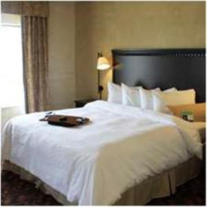 Photo of Hampton Inn & Suites Dallas Arlington North Entertainment District