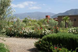 Les Jardins de Bouskiod, Lodges  Amizmiz - big - 1