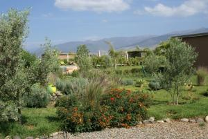 Les Jardins de Bouskiod, Lodges  Amizmiz - big - 15