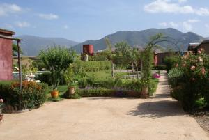 Les Jardins de Bouskiod, Lodges  Amizmiz - big - 24