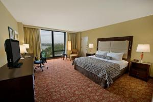 Executive King Room with Skyline View