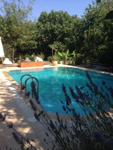 Fig Garden Cottages, Case vacanze  Kayakoy - big - 2