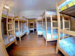Bed in 18-Bed Dormitory Room
