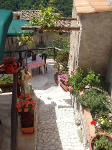 A Taverna Intru U Vicu, Bed and Breakfasts  Belmonte Calabro - big - 44