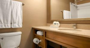 King Room with Roll-In Shower - Disability Access/Non Smoking