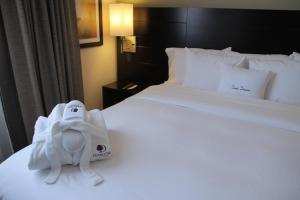 Double Tree By Hilton Queretaro