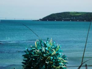 Shoreline B&B in Penzance, Cornwall, England