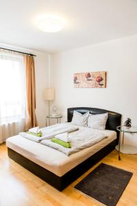 City Elite Apartments, Apartmanok  Budapest - big - 50