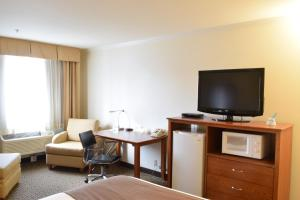Queen Room with Disability Access - Pet Friendly - Non Smoking