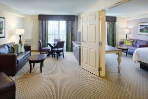 King Suite - Disability Access with Bath Tub