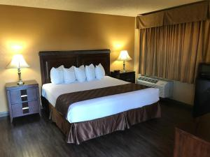 King Room with Roll-in Shower - Non-Smoking/Disability Access