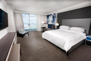 Whirlpool Suite with Falls View