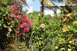 Residence Foulsafat, Chaty  Port Mathurin - big - 37