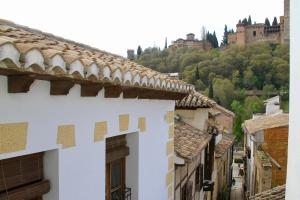 Apartment with Terrace and Alhambra view