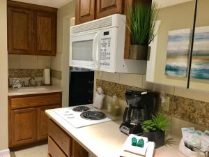Deluxe King Studio with Partial Ocean View - Pet Friendly #210