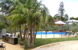 Koala Tree Motel - Mid North Coast, New South Wales, Australia