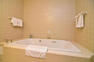 King Suite with Spa Bath - View