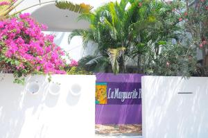 La Marguerite Pondi, Bed & Breakfast  Pondicherry - big - 1