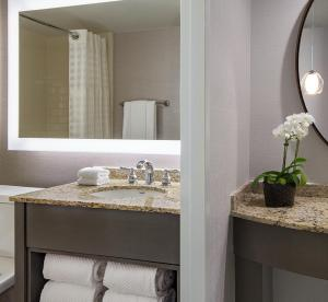 King Suite - Disability Access with Shower
