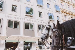 Hotel The Guesthouse Vienna, Viena