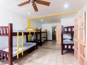 Bed in Male Dormitory Room 8 Bed 202