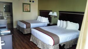 Queen Room with Two Queen Beds - Ground Floor - Disability Access - Smoking