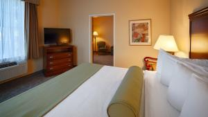 Family King Suite with Sofa Bed - Non-Smoking