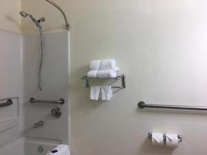 Best Western Roanoke Inn & Suites, Hotely  Roanoke - big - 8