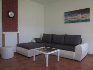 Apartment Udovičić, Apartmány  Tinjan - big - 5