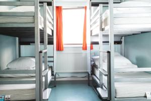 Bed in Mixed Dormitory Room for 4 People
