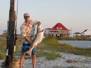 Fish Tales Home, Holiday homes  Dauphin Island - big - 22