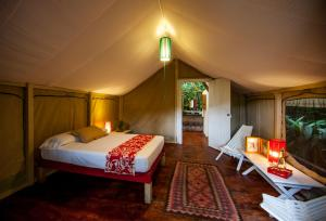 King Luxury Tent