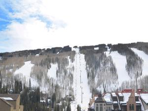 Vantage Point 408, Holiday homes  Vail - big - 33