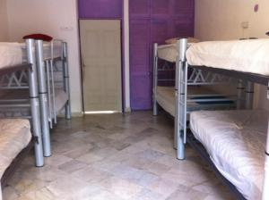 8-Bed Mixed Dormitory Room with Private Bathroom