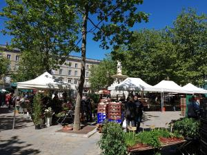 Penthouse Apartment overlooking Place Carnot, Apartmány  Carcassonne - big - 17