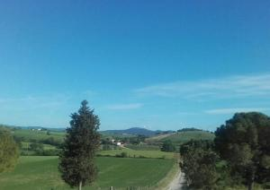 Agriturismo da Remo, Farm stays  Magliano in Toscana - big - 28