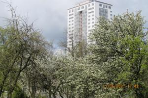 Apartments Ludwig van Beethoven, Apartments  Minsk - big - 32