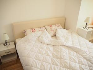 Marija Apartment, Appartamenti  Novi Sad - big - 15